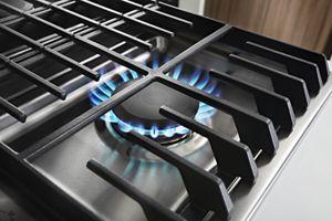 17K BTU Professional Burner