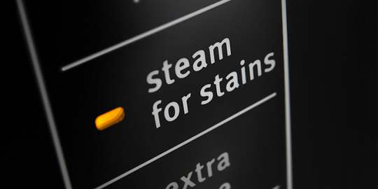 Steam for Stains Option