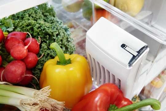 FreshFlow™ Produce Preserver
