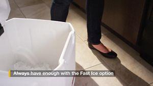 Fast Ice Option