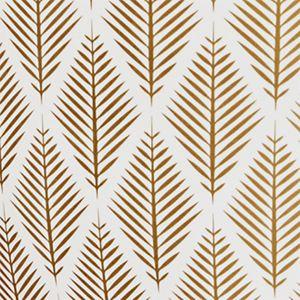 Gold Conifer