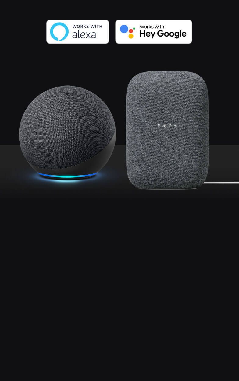 An Alexa-enabled device and a Google Assistant-enabled device on a black background.