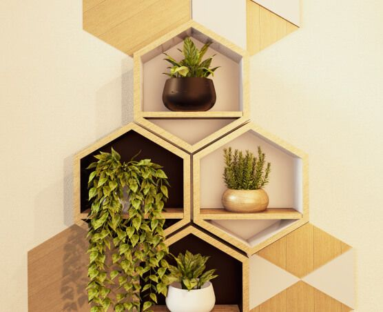 Honeycomb shelves filled with delicate plants.
