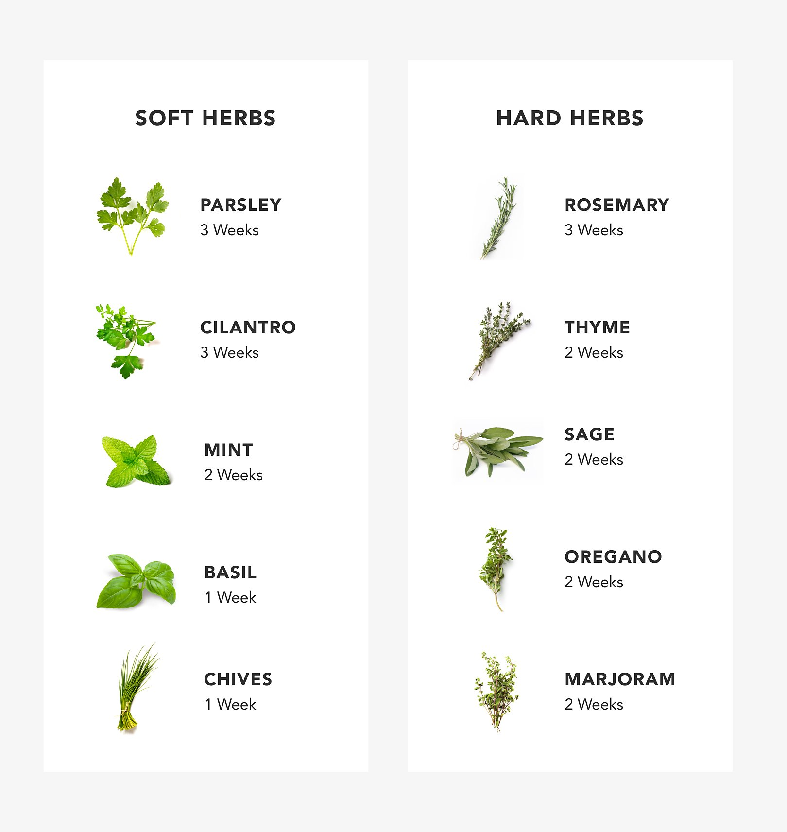 Chart with images of tender and woody herbs.
