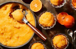 Orange Honey Sorbet