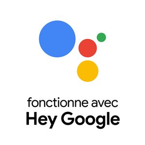 functionne avec Hey Google