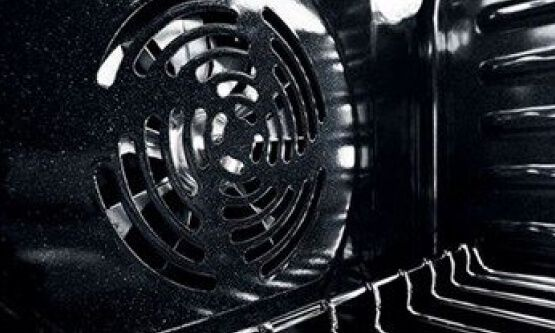 Fan inside a convection oven.