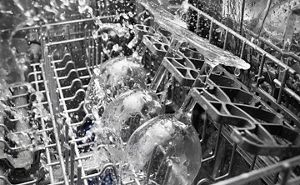 Wine glasses being washed in a dishwasher